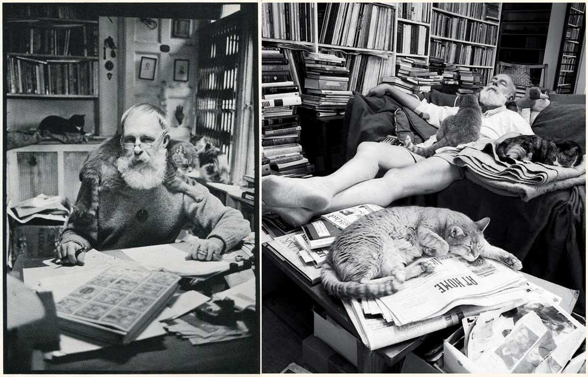Edward Gorey pisici