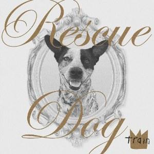 Rescue Dog Lyrics - Train