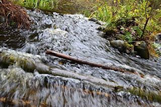 Myllypuro, virtaava vesi
