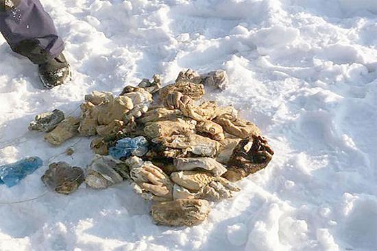 Mistério das 54 mãos decepadas encontradas na Rússia foi finalmente resolvido - Img 2