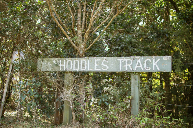 Hoddles Track Bushwalk Sign