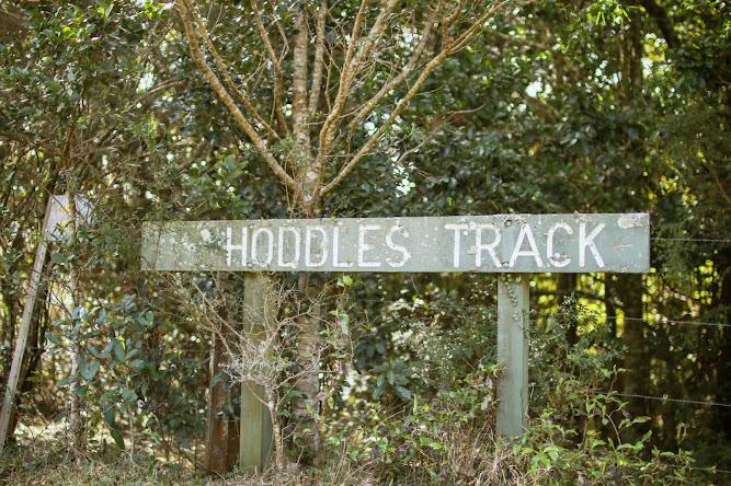 Hoddles Track Bushwalk Sign