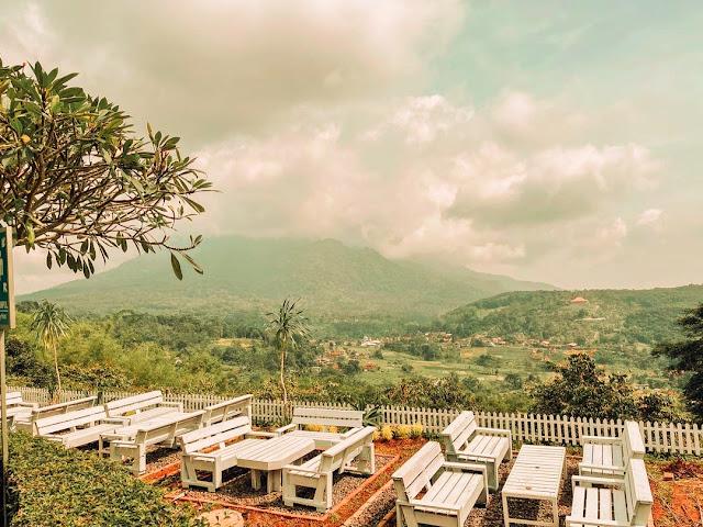 Jungle Cafe Trawas Mojokerto - Informasi Menu, Daya Tarik dan Lokasi