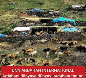 CNN ARDAHAN INTERNATİONAL Ardahanı dünyaya dünyayı ardahanı tanıtır