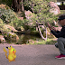 Lebih seronok! Pokemon Go dimainkan dengan HoloLens 2