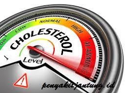 Mengapa Ada Kolesterol Jahat dan Kolesterol Baik