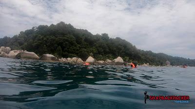 Shark Point Snorkeling