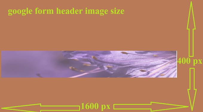 google form header image size(all info.)