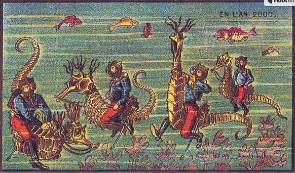 Divers on Horseback