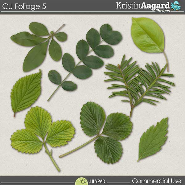 http://the-lilypad.com/store/digital-scrapbooking-cu-foliage-5.html