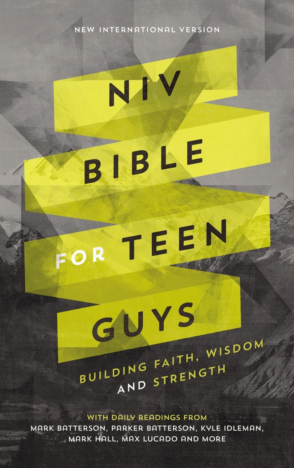 Bible For Teen Guys Is 53