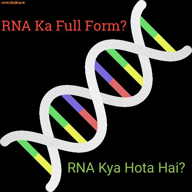RNA Full Form in Hindi | RNA क्या हैं?