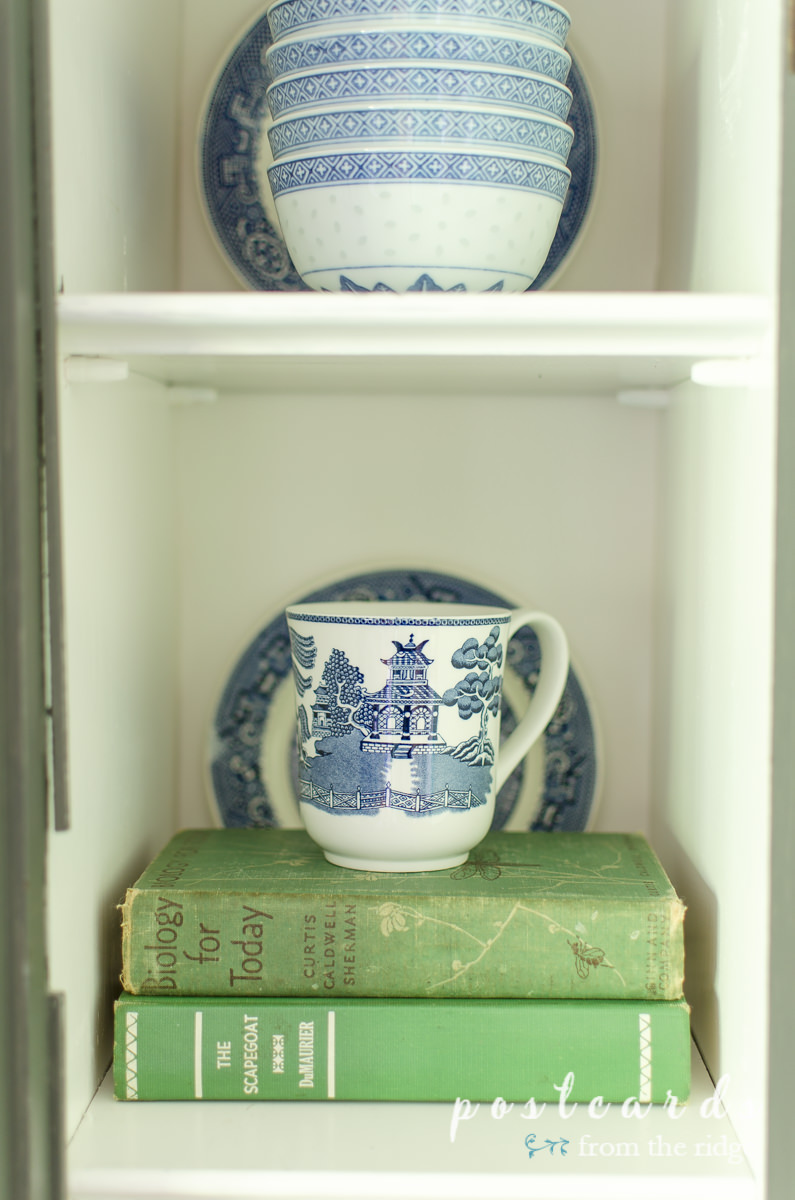 vintage books and a blue willow teacup