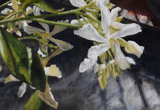 brush strokes, home, jasmine, Gelsomino, Tuscany, oil paintings, garden