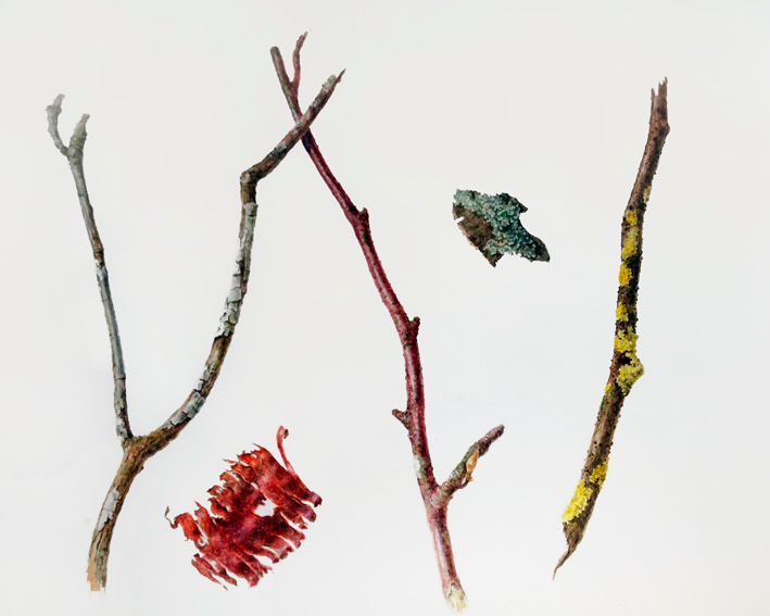 Twigs, bark and lichen painting