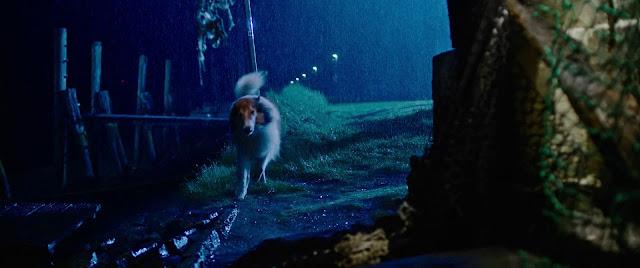 Lassie Vuelve a Casa 1080p latino