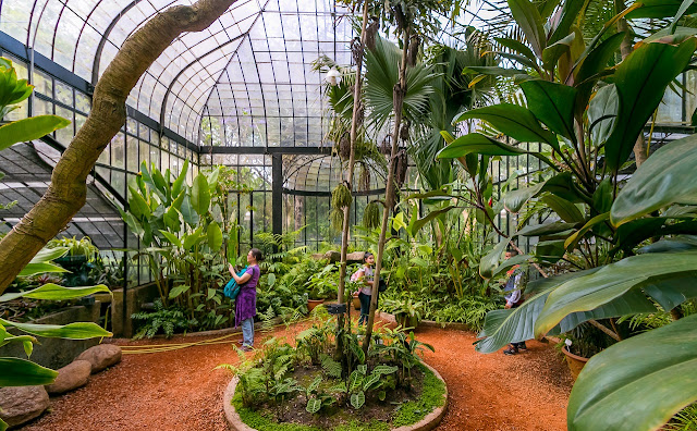 Invernadero art nouveau del Jardín Botánico de Buenos Aires