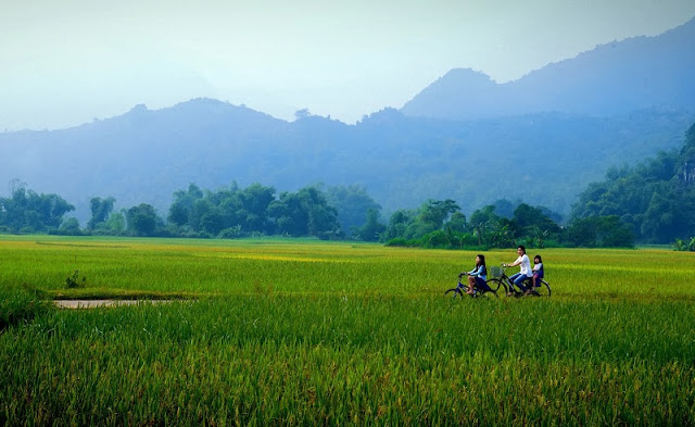Top 10 Trails For The Best Trekking in Vietnam 4