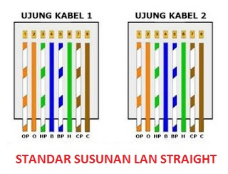 susunan kabel lan straight yang benar pada umumnya