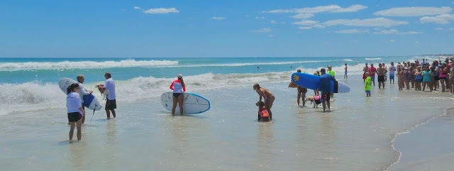 cocoa beach florida dogs unleaded surfing competition