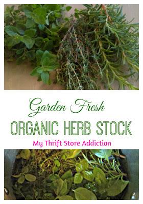 garden fresh organic herb stock