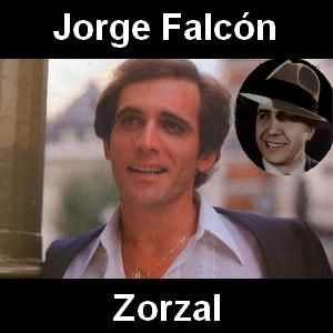 Jorge Falcon - Zorzal