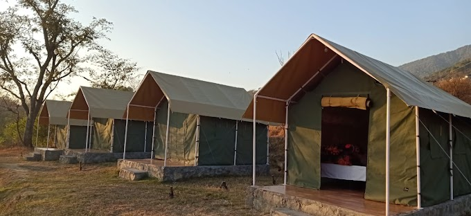 Camping in Bir Billing | Safari Package - himalayanfever