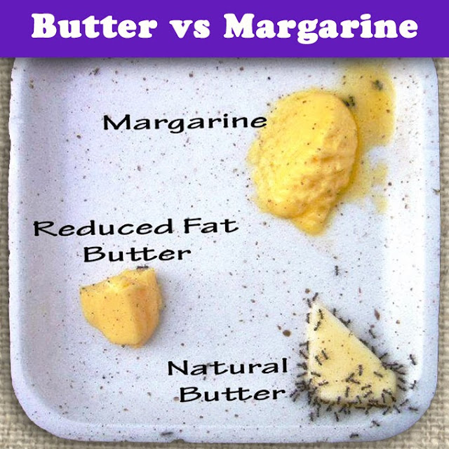 what is the major difference between margarine and butter