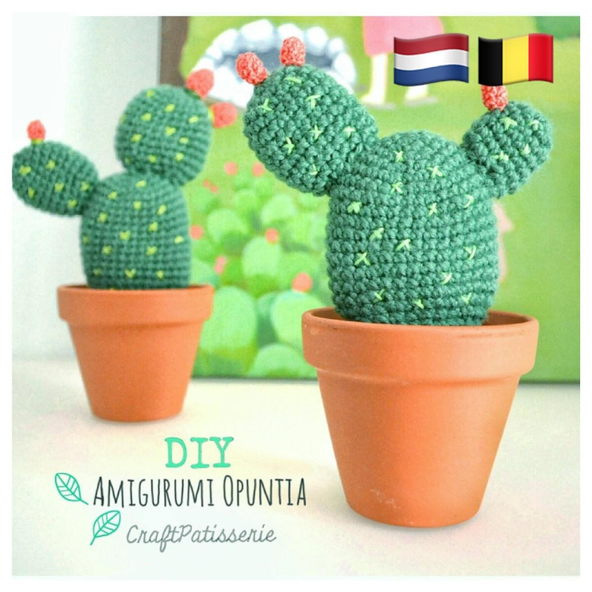Welp Cactusvijg (NL-vertaling) II-26