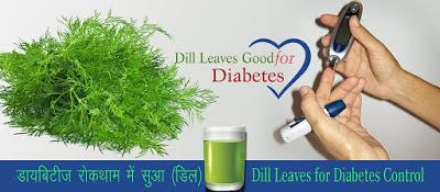 डिल सुआ डायबिटीज औषधि Dill Diabetes Remedies in Hindi