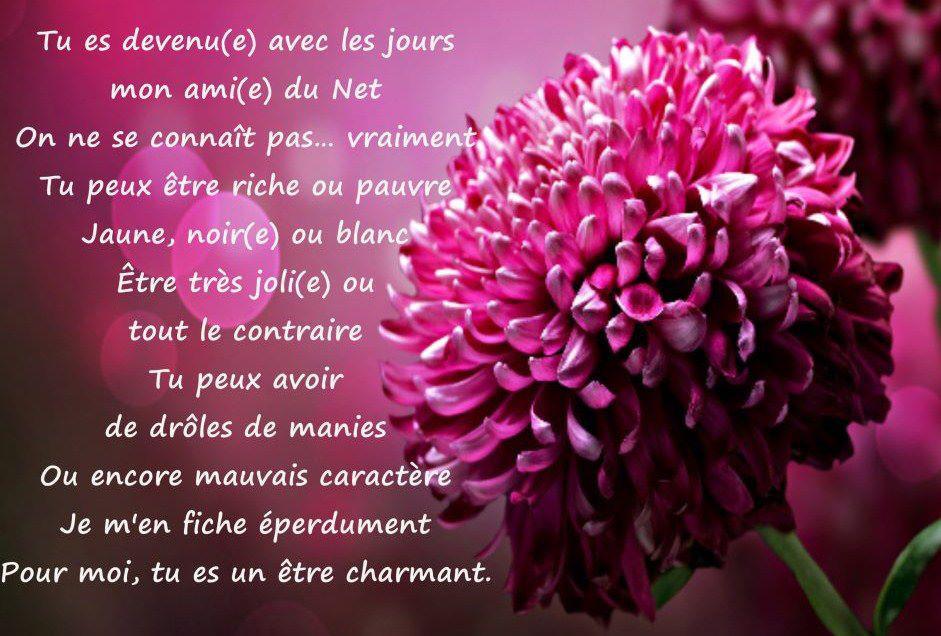 Citations Option Bonheur Panneau De Citation Sur L Amitié