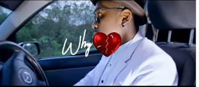 DOWNLOAD VIDEO | Steve Rnb – WHY Mp4