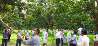 চাঁপাইনবাবগঞ্জে আমপাড়া উৎসব: