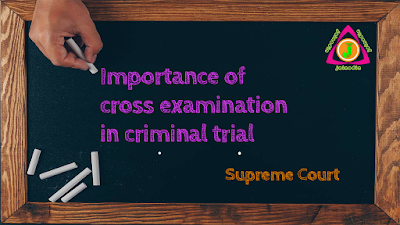 importance-of-cross-examination