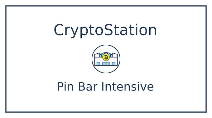 Pin Bar Intensive