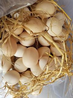Trứng gà ta thả vườn Đồng Nai
