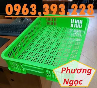Sọt nhựa rỗng HS010, sọt đựng trái cây, sóng nhựa rỗng đựng nông sản 61x42x10