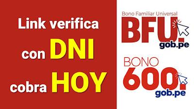 Bono Familiar Universal y Bono 600 LINK con DNI cobrar hoy 26 de junio