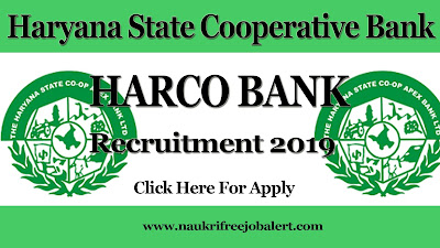 government job, bank job, recent bank jobs, harco bank recruitment 2019, bank new recruitment, haryana state cooperative bank recruitment 2019, clerk job