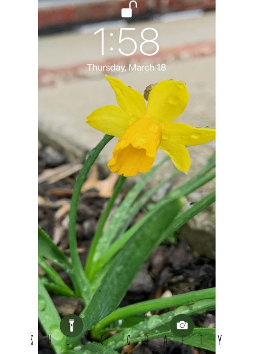 Happiness Hacks - change the lock screen on your phone to photo of daffodil.