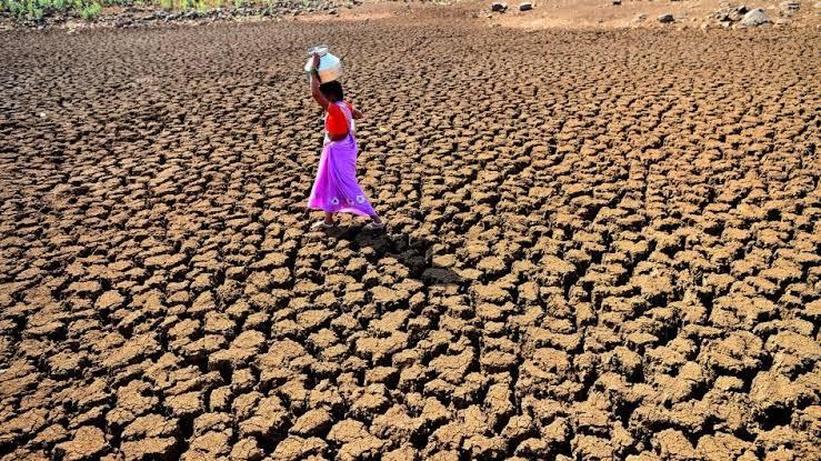 જળ, જમીન અને જંગલને બચાવો