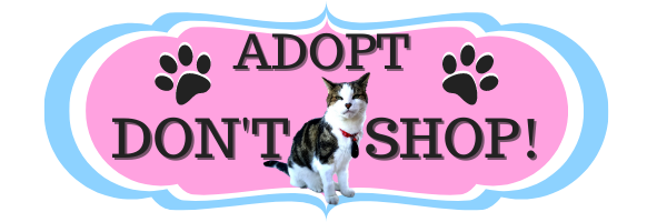 Adopt Don't Shop Banner  ©BionicBasil®