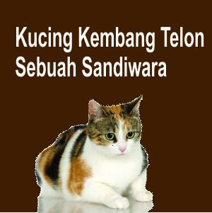 Kucing Kembang Telon, Sandiwara Radio