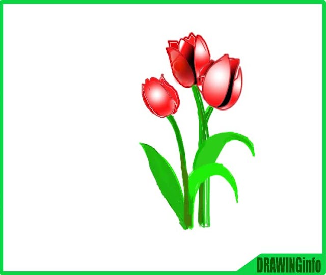 how to draw a tulip flower easy step by step drawing tutorial