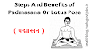 Steps And Benefits of Padmasana or Lotus Position | पद्मासन