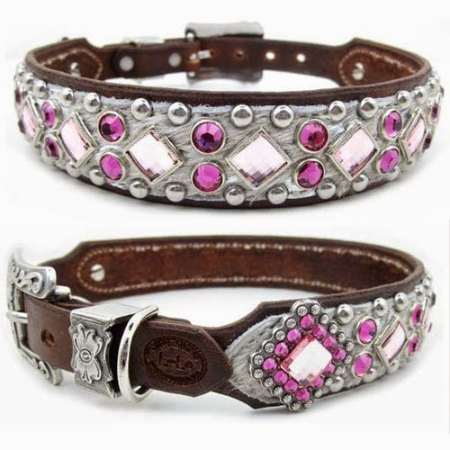 Rules of the Jungle: Why do you need designer dog collars