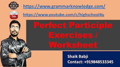 Perfect Participle Exercises / Worksheet
