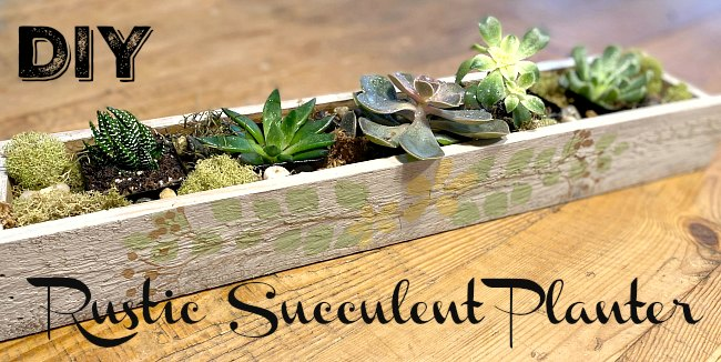 Make a Stenciled Rustic Succulent Planter