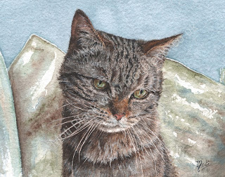 Watercolour painting of Toast the Tabby Cat