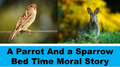 A Parrot And a Sparrow Bed Time Moral Story